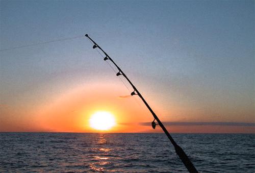 Big apple fishing home of the new york city fishermen for Long island sound fishing spots